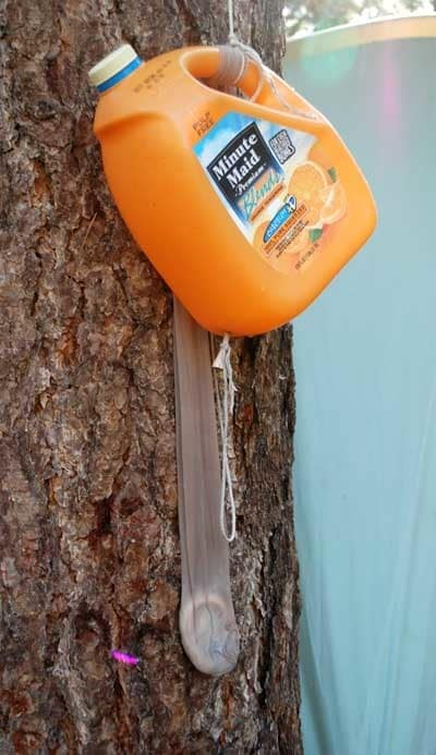 5. Plop a bar of soap into old pantyhose, tie it to a water jug, and everyone can have clean hands.