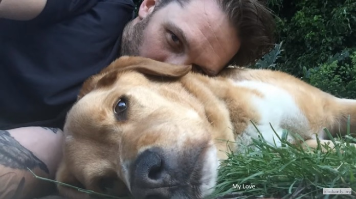 Tom Hardy has paid an emotionally-charged tribute to his dog and 'best friend', Woodstock – and hearts have broken everywhere!