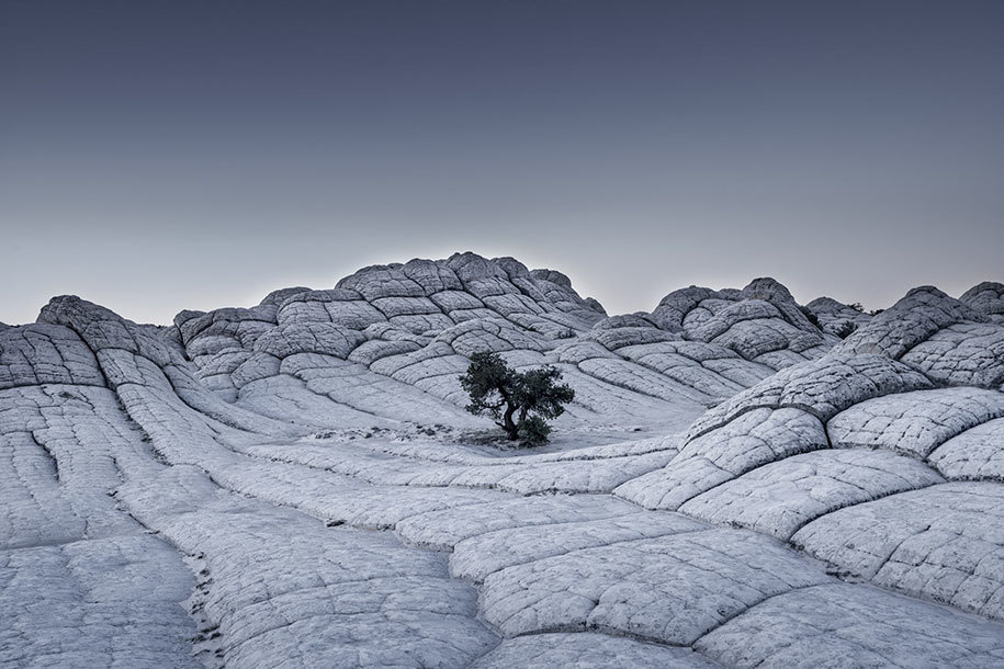 20. Tom Jacobi of Germany submitted this gray landscape for the Professional, Landscape category.