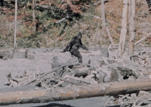 t's illegal to kill Bigfoot in Washington.