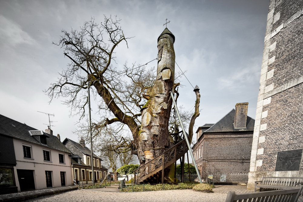 A thousand-year-old oak tree with a chapel inside, France