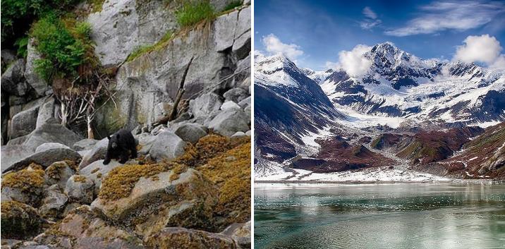 15. Set sail on an Alaskan cruise: