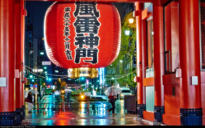 24. Immerse yourselves in Japanese culture:
