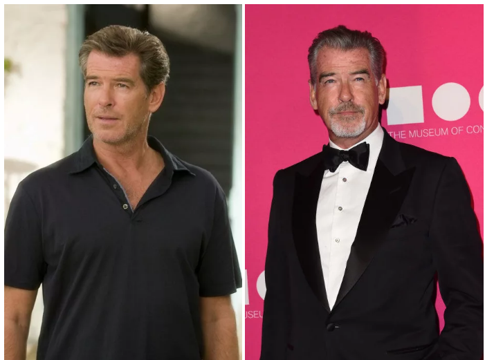 Pierce Brosnan as Sam