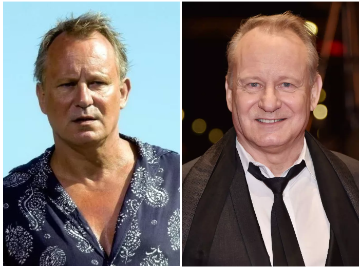 Stellan Skarsgård as Bill