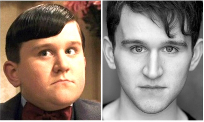 Dudley Dursley played by Harry Melling